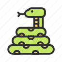 pet, reptile, shop, snake