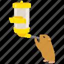 bottle, feeder, guinea, hamster, pet, pig icon