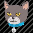 collar, cat, head, kitten, pet, feline icon