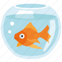 bowl, fish, gold, goldfish, pet, fish tank