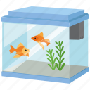 fish, fish keeping, aquarium, fish tank, pets