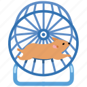 wheel, pet, running, accessory, hamster, toy
