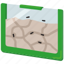 ant, ant farm, colony, farm, insect, pets icon