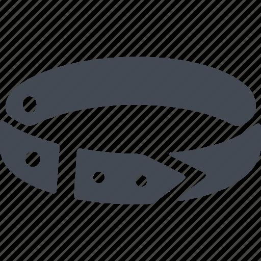 collar, dog collar, lead, pets icon