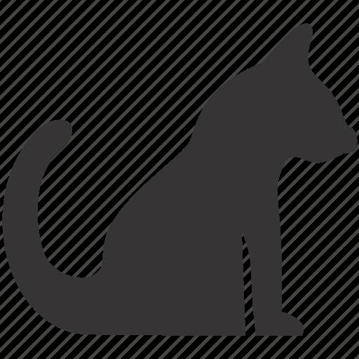 animal, cat, pet, toy icon