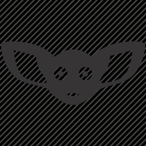 bat, decoration, flying, halloween, mammal, nocturnal, vampire icon