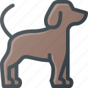 animal, company, dog, pet, pets icon