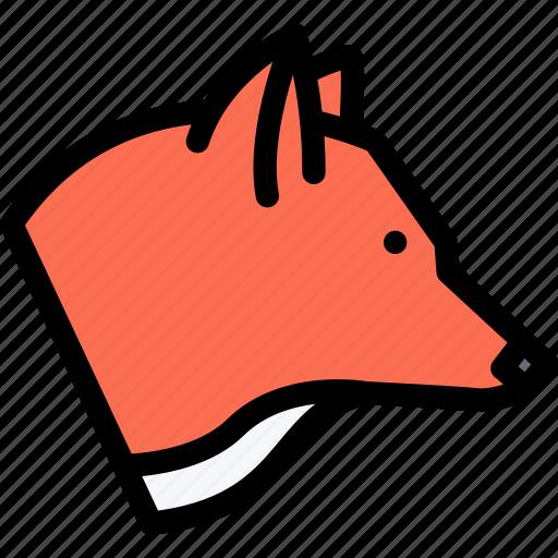 animals, fauna, fox, pet store, pets, vet icon