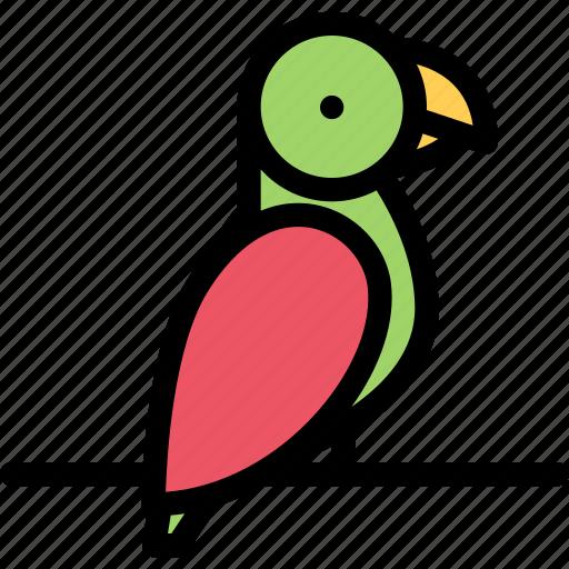 animals, fauna, parrot, pet store, pets, vet icon