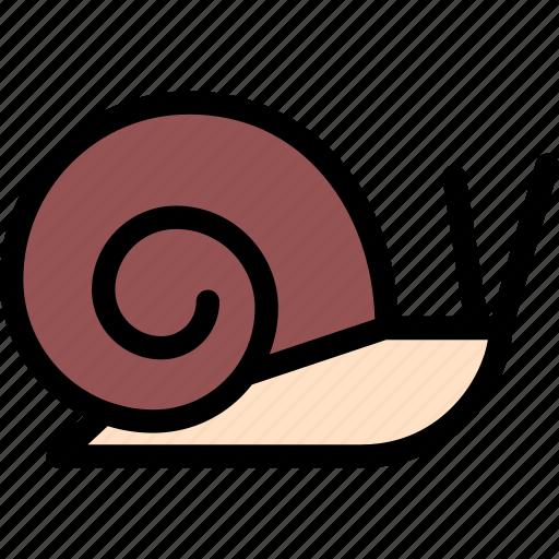 animals, fauna, pet store, pets, snail, vet icon