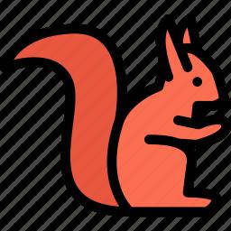 animals, fauna, pet store, pets, squirrel, vet icon