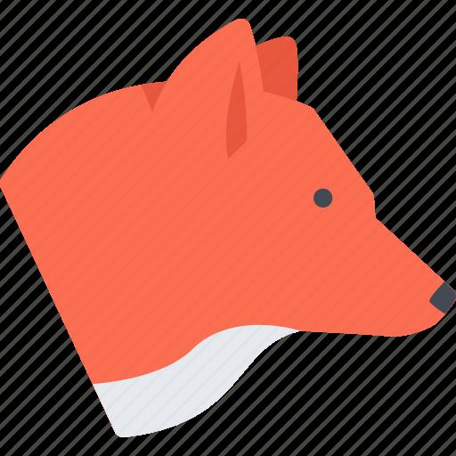 animal, fox, pet, pet shop, vet, zoo icon