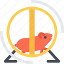animal, hamster, pet, pet shop, vet, zoo icon