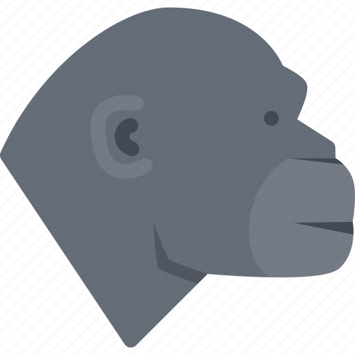 animal, monkey, pet, pet shop, vet, zoo icon