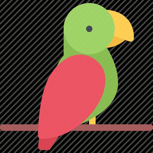 animal, parrot, pet, pet shop, vet, zoo icon
