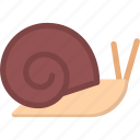 animal, pet, pet shop, snail, vet, zoo icon