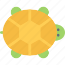 animal, pet, pet shop, turtle, vet, zoo icon