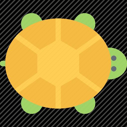 animal, pet, pet shop, turtle, vet, zoo icon