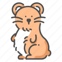 animal, cute, hamster, mouse, pet icon