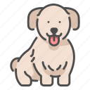 cute, pet, dog, animal, smile, puppy, happy icon