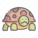 animal, cute, pet, shell, turtle icon