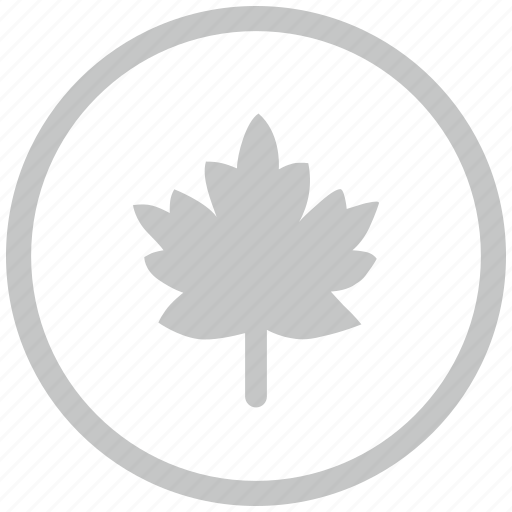 border, canada, circle, leaf, nature icon