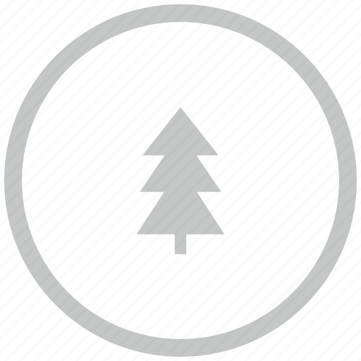 border, circle, fir, forest, tree icon