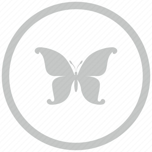 border, butterfly, circle, swallowtail icon