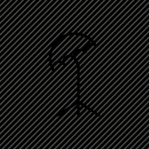outline, photography, tripod, umbrella icon