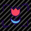 camera macro, flower image, flower target, macro, macro mode icon