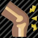 knee, bone, articulation, leg, joint, pain