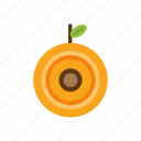 apricot, drink, food, fruit, nature icon