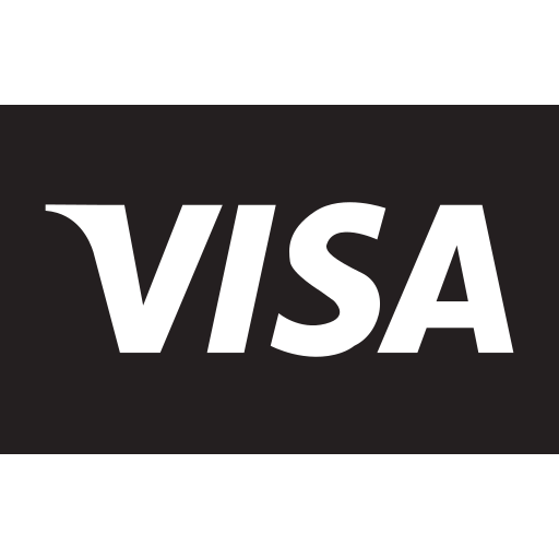 amount, card, currency, payment, price, shop, visa icon