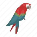 animal, bird, parrot, talking, tropic icon