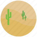 cactus, desert, heat, locations, places, sand