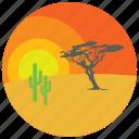 cactus, desert, locations, places, sunset, tree