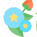 beans, flowers, plant, sheet icon