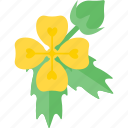 flowers, garden, plant, seed icon