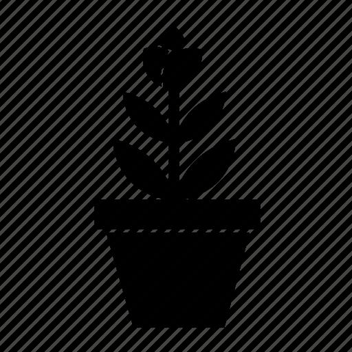 flower pot, flowerpot, nature, plant, planting flower, plants, potted plant icon