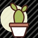 bunny, cactus, decor, ears, green, nature
