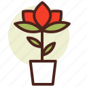 decor, green, nature, rose icon