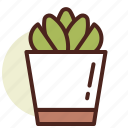 decor, green, nature, succulent2 icon