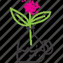 carafa, flower, pink, sketch, vase icon