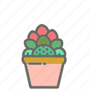 cactus, garden, leaves, nature, plant, plants, pot icon