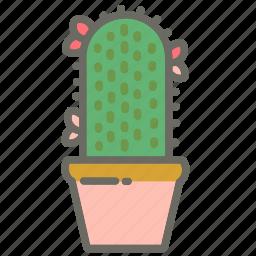 cactus, garden, leaves, nature, plant, plants, pot icon