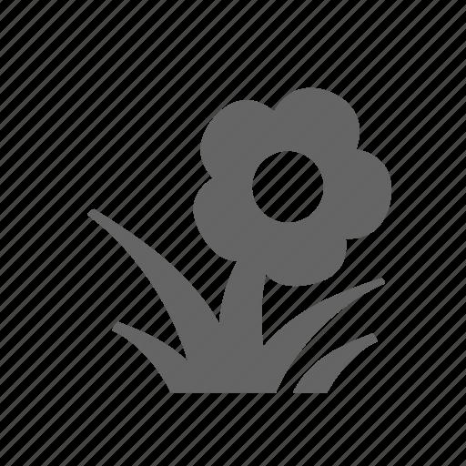 blossom, bud, floret, flower, grass, herb, plant icon