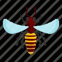animal, asp94, bee, cartoon, honey, object, wasp