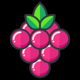 berries, game, go, play, pokemon icon