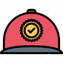 agitation, cap, check, politics, vote, voter, voting icon