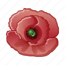 cartoon, floral, flower, natural, opium, poppy, red icon